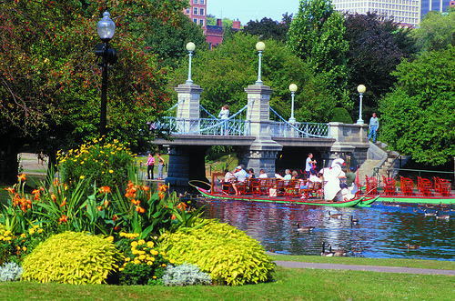 BostonGarden Swan Boats