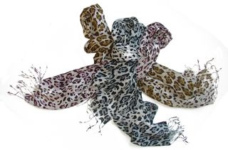 Fraas Leopard