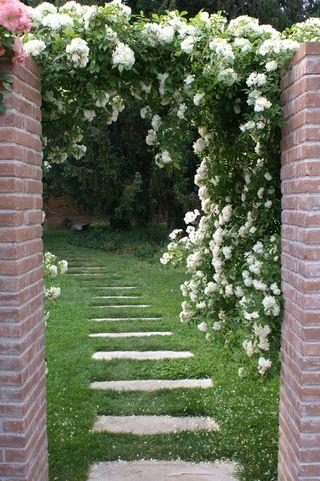Bauer Venice Garden
