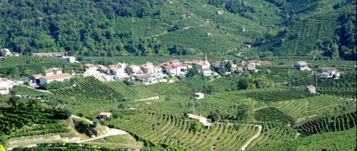 Prosecco DOC area