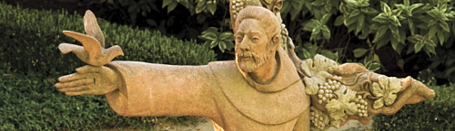 Sfv_Assisi_at_visitors_cntr