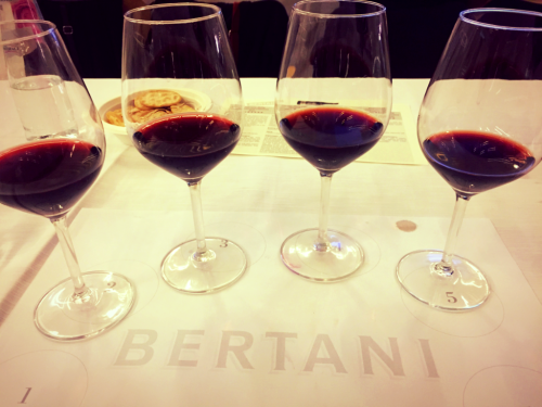 Bertani Amarone Tasting Flight