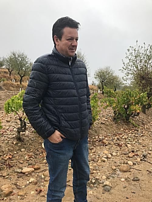 José Ferrer Viñas del Vero