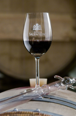 SALENTEIN WINE GLASS
