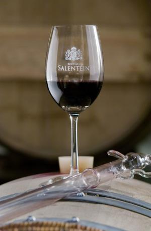 SALENTEIN WINE GLASS