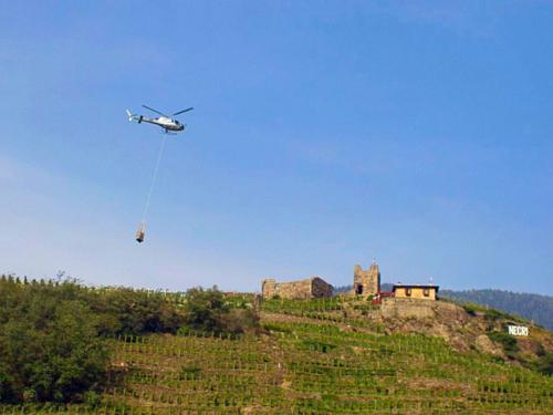 Nino Negri Helicopter Harvest