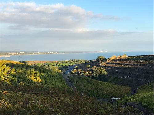 View from Domaine de La Tour Vieille