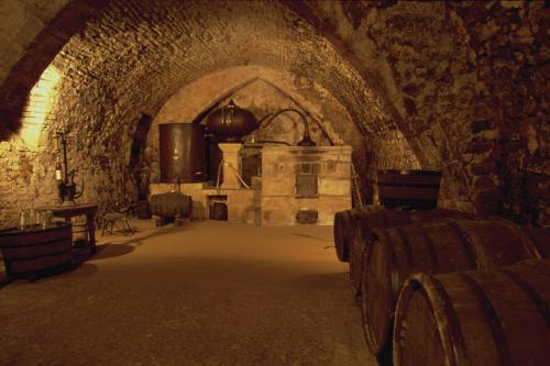 Dlm_cellar