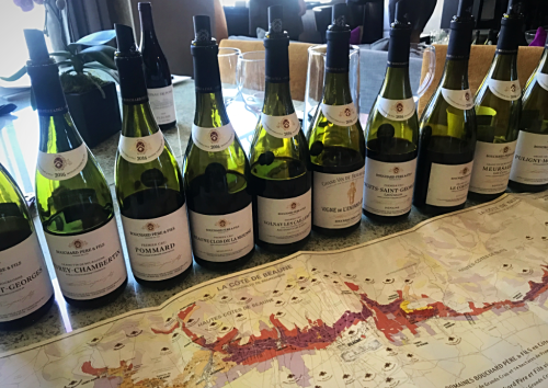 Bouchard Wines