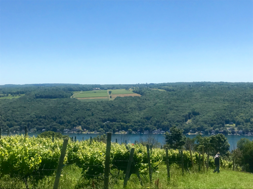 Keuka Lake finger lakes