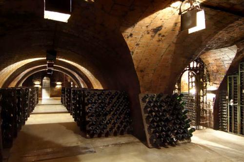 Pere Ventura Cellar