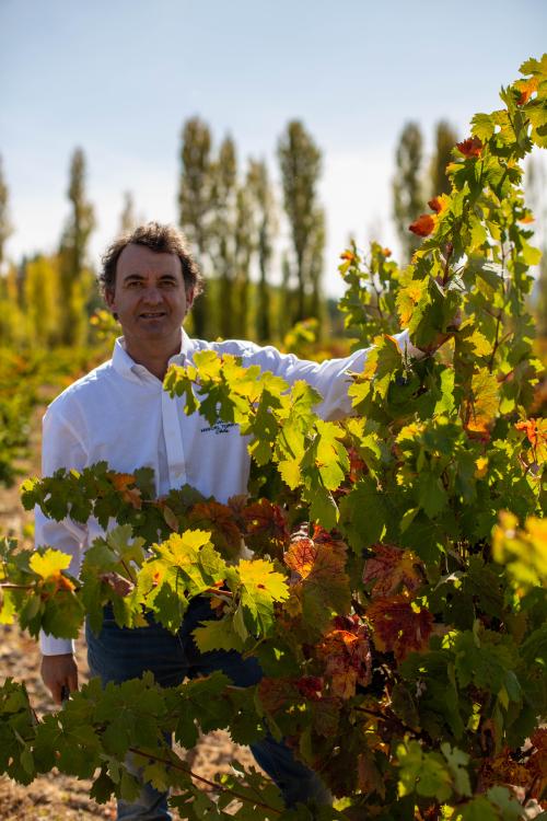 MTC_Eduardo Jordán Villalobos_1 (Chief Winemaker)